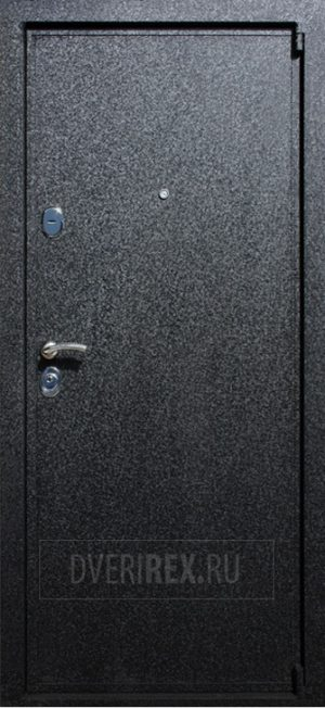 Входная дверь REX 3 с зеркалом
