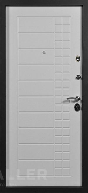 Входная дверь Скала Сталлер