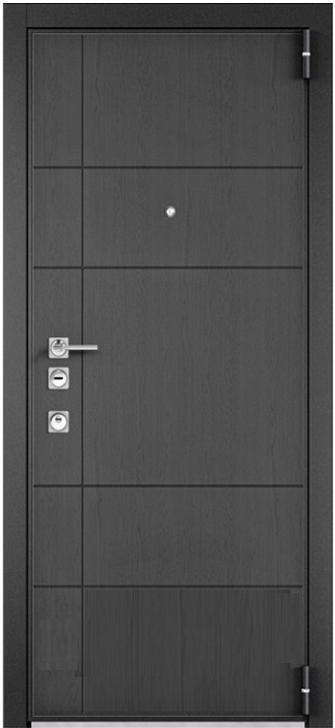 Входная дверь Mastino Forte Синхропоры графит MS-114